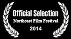 northeastfilmfestival